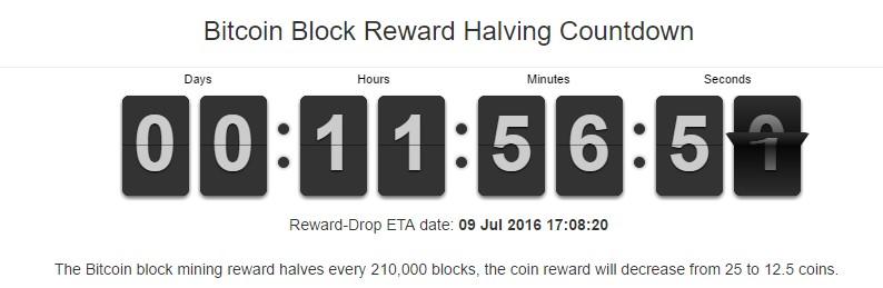 сколько можно намайнить биткоинов в день калькулятор